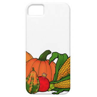 fall border iPhone 5 cases