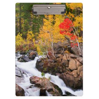 Fall color along Bishop Creek, CA Clipboard