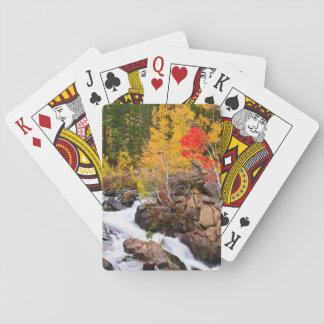 Fall color along Bishop Creek, CA Playing Cards