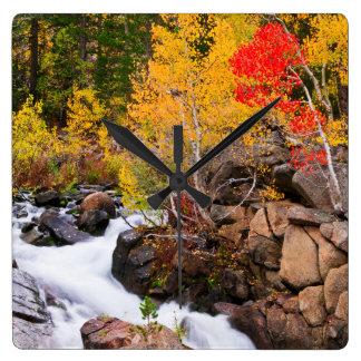 Fall color along Bishop Creek, CA Square Wall Clock