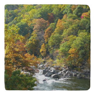 Fall Color at Ohiopyle State Park Trivet
