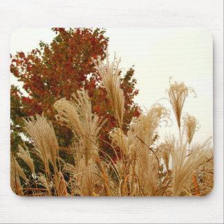 Fall Colors Autumn Season Nature Photography Mousepad