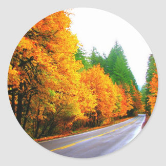 Fall Colors Classic Round Sticker