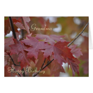 Fall Colors ~ Grandma Birthday Greeting Card