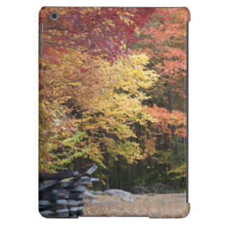 Fall Colors iPad Air Case