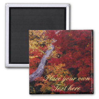 Fall Colors magnet add your own words