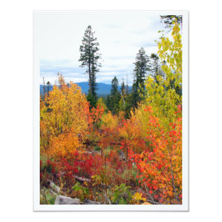 """Fall Colors Note Card 4.25"""" x 5.5"""" w/Envelope"""