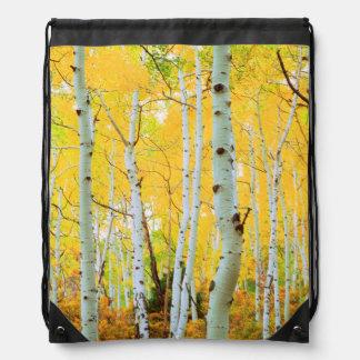 Fall colors of Aspen trees 1 Rucksack