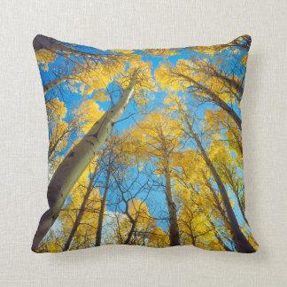 Fall colors of Aspen trees 2 Cushion