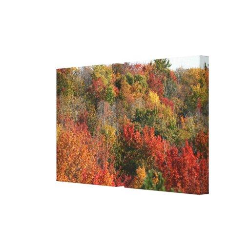 Fall Colors Off Cut River Bridge Michigan Gallery Wrapped Canvas
