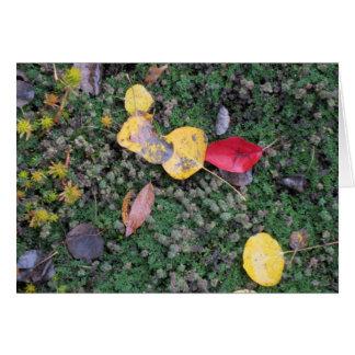 Fall Colors Sympathy Card