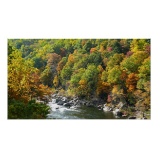 Fall Colour at Ohiopyle State Park Poster