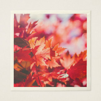 Fall Colour Standard Luncheon Paper Napkins