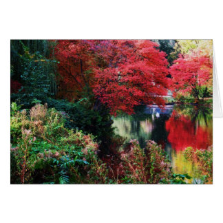 Fall Colours and Autumn Leaves Card