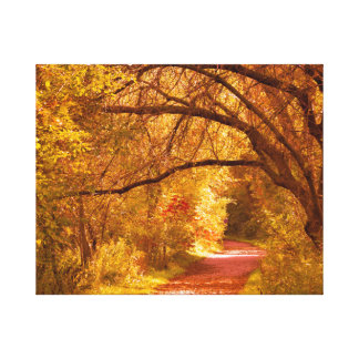 Fall colours nature path canvas print