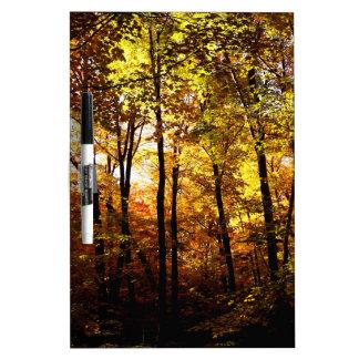 Fall Colours on St Joseph Island Dry Erase Board