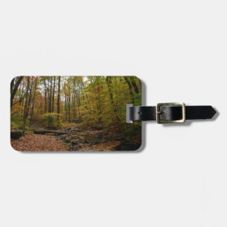 Fall Creek at Laurel Hill State Park Bag Tag