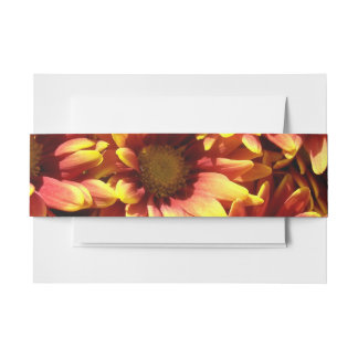 Fall Daisies Invitation Belly Band
