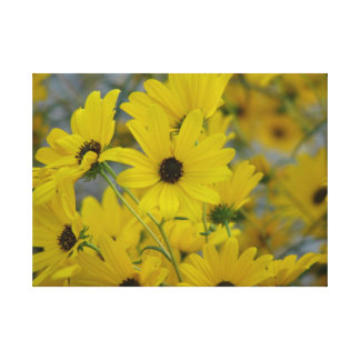 Fall Daisy Print Stretched Canvas Prints