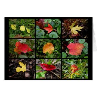 Fall(en) beauties card