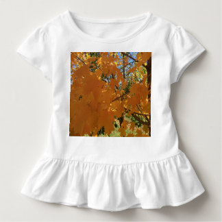 fall fiesta toddler T-Shirt