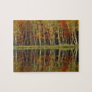 Fall Foliage and Birch Reflections; Hiawatha Jigsaw Puzzle
