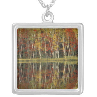 Fall Foliage and Birch Reflections; Hiawatha Square Pendant Necklace