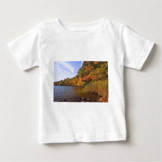 Fall Foliage at Spot Pond Baby T-Shirt