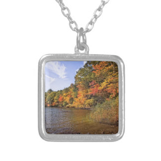 Fall Foliage at Spot Pond Silver Plated Necklace