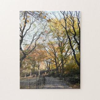 Fall Foliage Autumn Leaves Nature Tree Photography Jigsaw Puzzle