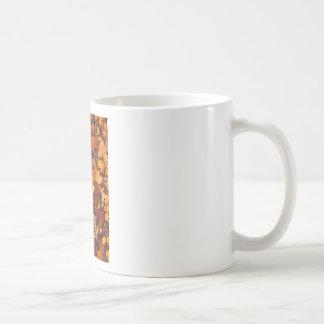 Fall-foliage Coffee Mug