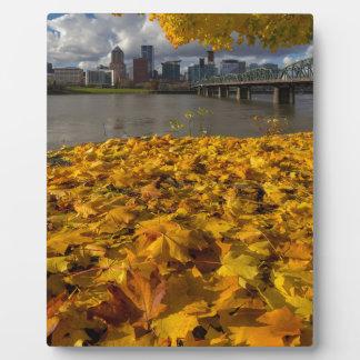 Fall Foliage in Portland Oregon City Plaque