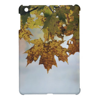 Fall Foliage iPad Mini Covers