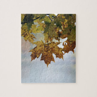 Fall Foliage Jigsaw Puzzle