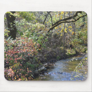 Fall Foliage near Creek Mouse Pad