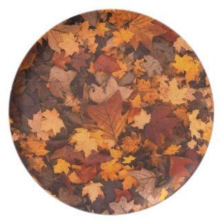 Fall-foliage Plate