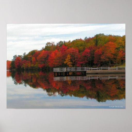 Fall Foliage Print