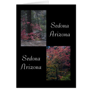 Fall foliage Sedona,Arizona Card
