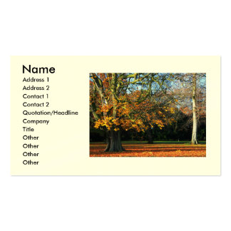 Fall For You Business/Profile Card Business Cards