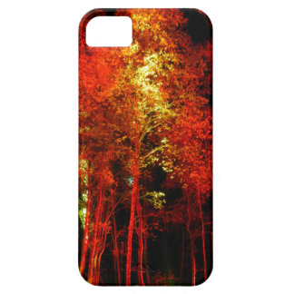 Fall Forest iPhone 5 Covers