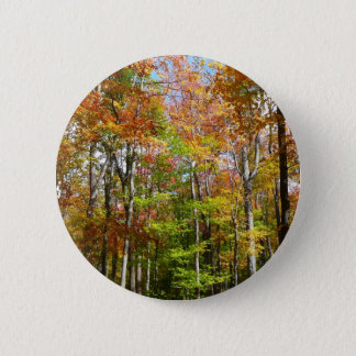 Fall Forest II Autumn Landscape Photography 6 Cm Round Badge