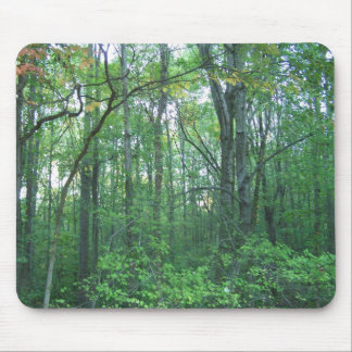 Fall Forestry Mouse Pad