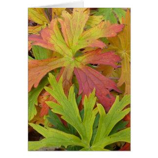 Fall Geranium Card
