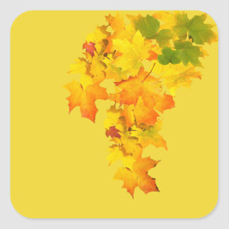 Fall Glory square stickers