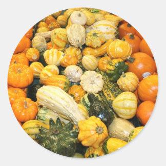 Fall Gourds & Mini Pumpkins Sticker