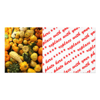 Fall Gourds Photo Cards