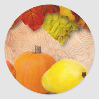 Fall Harvest Rustic style Sticker
