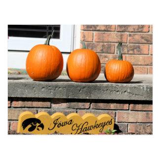Fall in Iowa Postcard