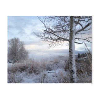 Fall in Jackson Hole, WY Canvas Print