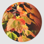 Fall In Love Fall Wedding Envelope Seal Sticker